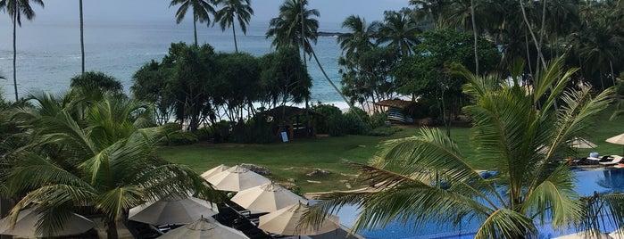 Anantara Peace Haven Tangalle Resort is one of Heena 님이 좋아한 장소.