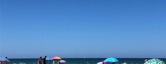 Vavá Playa is one of Tarifa Cádiz to do.
