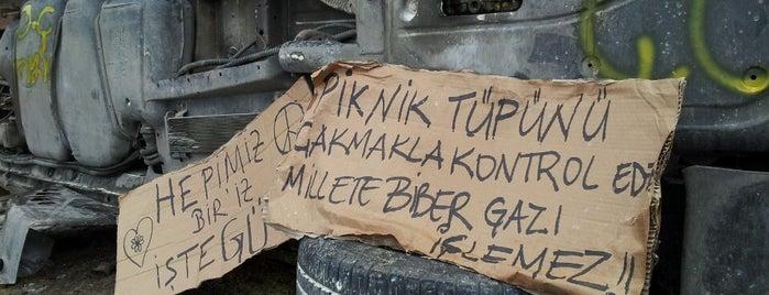 Taksim Gezi Parkı is one of Oğuz Kağan'ın Beğendiği Mekanlar.