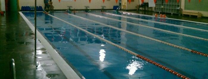 Sportium Club is one of Locais curtidos por Yarir.