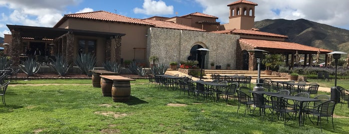 El Cielo Valle de Guadalupe is one of Abraham'ın Beğendiği Mekanlar.