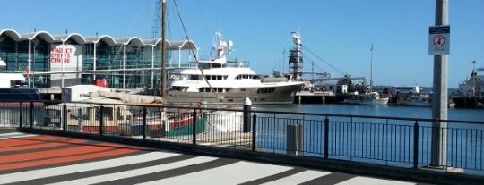 Wynyard Quarter is one of Amazing Auckland.