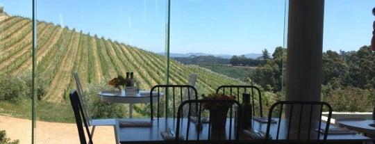 Tokara DeliCATessen is one of Cape Town + Winelands.