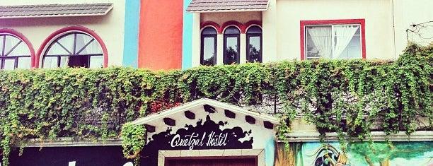 Hostel Quetzal is one of México trip.