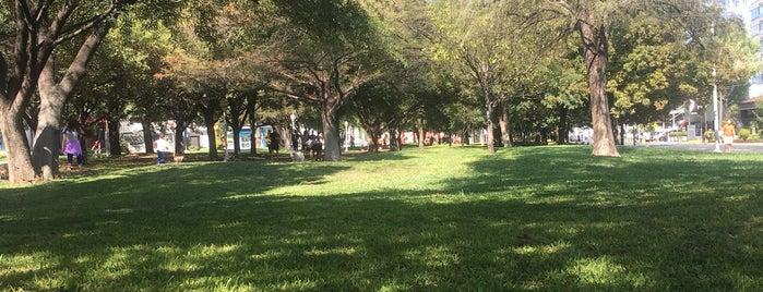 Vitapista Calzada del Valle is one of Lugares favoritos de Monica.