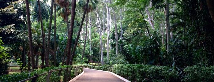 Jardim Botânico is one of Locais Preferidos Fly Burgers.