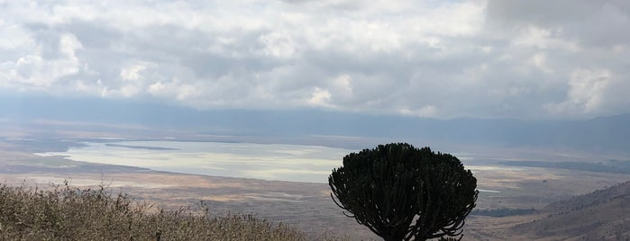 Ngorongoro Conservation Area is one of Chris'in Beğendiği Mekanlar.
