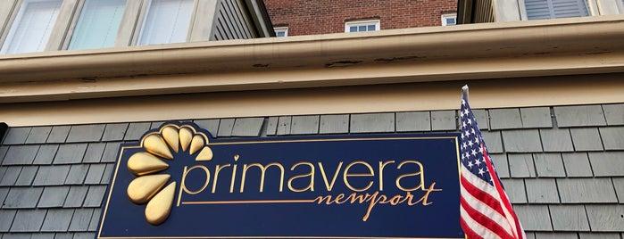 Primavera is one of NEWPORT.
