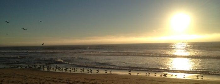 Venice Beach is one of สถานที่ที่ Deanna ถูกใจ.