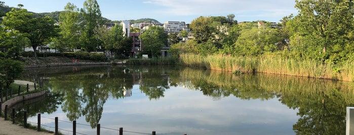 樋之池 is one of Orte, die Nak gefallen.