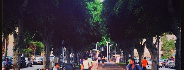 Rothschild Boulevard is one of I heart Tel Aviv.