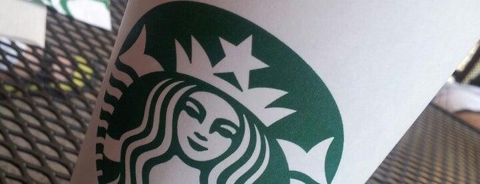 Starbucks is one of Lieux qui ont plu à Al.