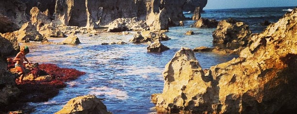 Playa de Toró is one of Gabrielさんのお気に入りスポット.