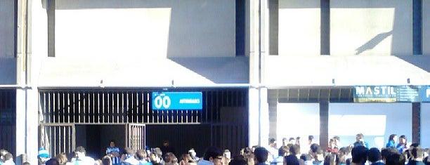 Estadio de Riazor is one of La Liga BBVA Stadium 2013-14.