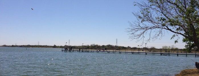Braunig Lake Park is one of Chris : понравившиеся места.
