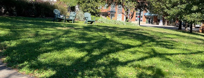 Rhodeside Green Park is one of Parks In Arlington Virginia.