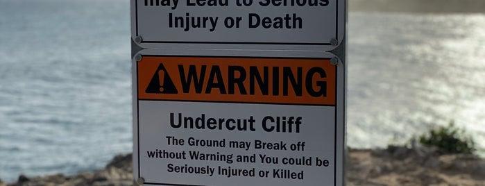 Shipwreck's Cliff is one of Posti che sono piaciuti a Mark.