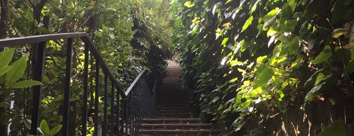 Beachwood Canyon Secret Stairs is one of Guests in Town I.