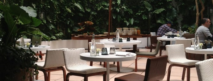 Hotel Condesa DF is one of Design Hotels.