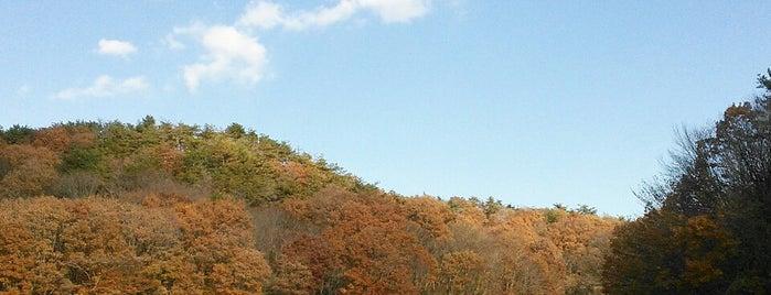 猿久保田んぼ公園 is one of Tempat yang Disukai 高井.