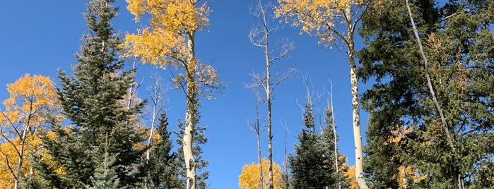Aspen Vista Trail is one of Aleksey's Saved Places.