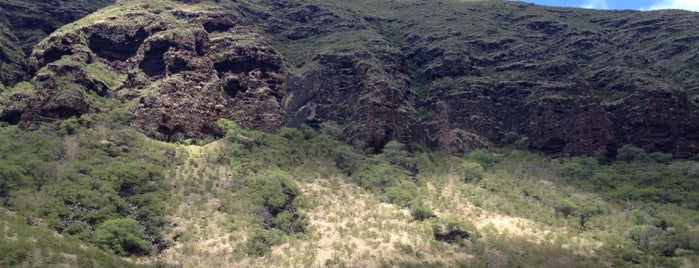 Kaena Point (end of the road) is one of Hawaiian Islands Top Picks.