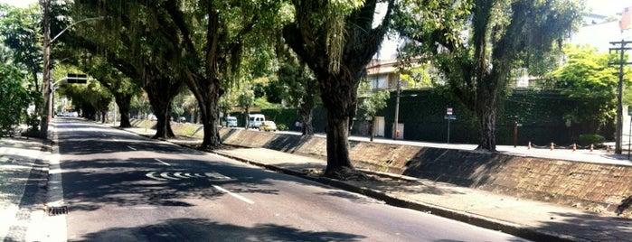 Avenida Visconde de Albuquerque is one of Nathalia.
