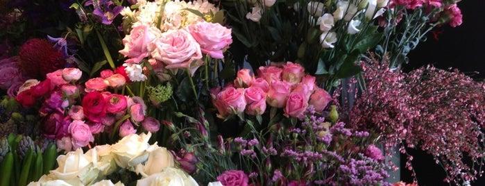 Flores y Amores is one of Posti che sono piaciuti a Guenia.
