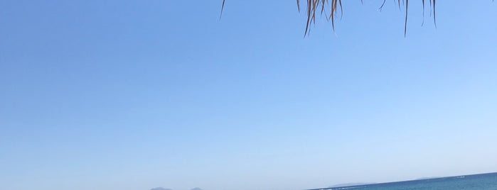 Magic Beach is one of Posti che sono piaciuti a Mayte.