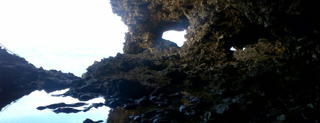 Animal Flower Cave is one of barbados best.
