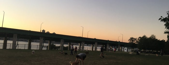 Riverside Boulevard Dog Run is one of Lost Wages.