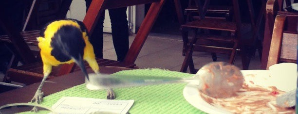 Mistura Brasil is one of Locais curtidos por Raul.