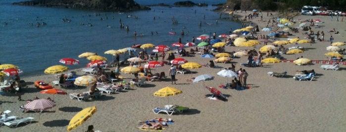 Tirebolu Plajı is one of Lugares favoritos de Merve.