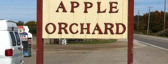 Blake's Big Apple Orchard is one of Michigan.