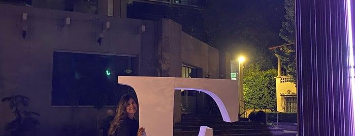Fundacion Miguel Aleman is one of Lieux qui ont plu à Diana.