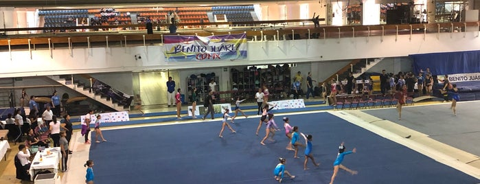 Gimnasio Delegacion Benito Jarez is one of CDMX deporte.