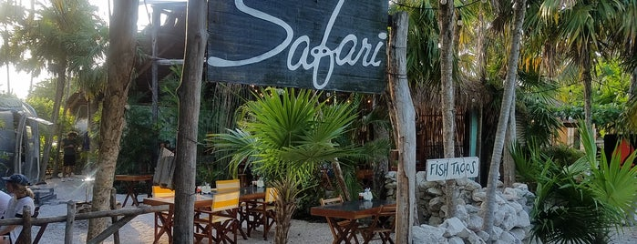 Safari is one of Tulum To-Do List.