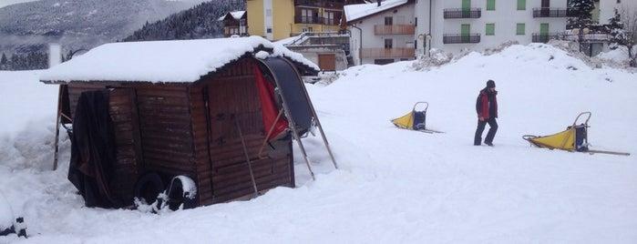 Centro Sleddog Andalo is one of Trentino Ski Sunrise.