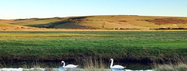 Cuckmere Haven is one of Trips away from 🏡.