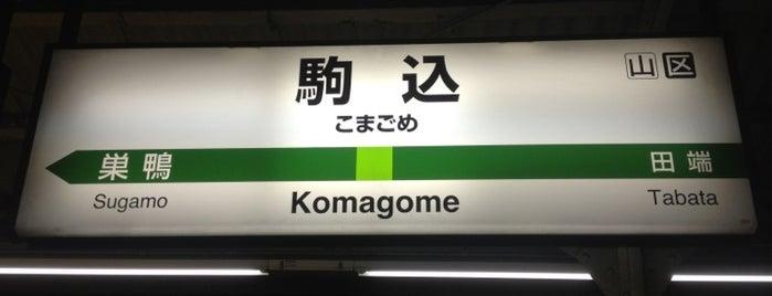 Komagome Station is one of JR 미나미간토지방역 (JR 南関東地方の駅).