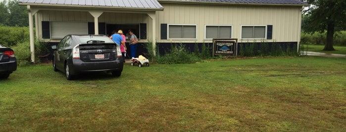 Bonnell's Blueberry Farm is one of Lieux qui ont plu à Debbie.