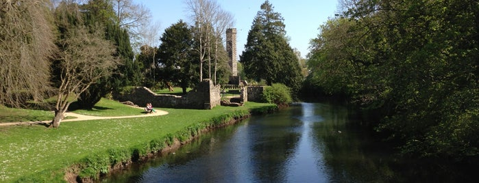 Castle Grounds is one of Northern Ireland + Ireland.