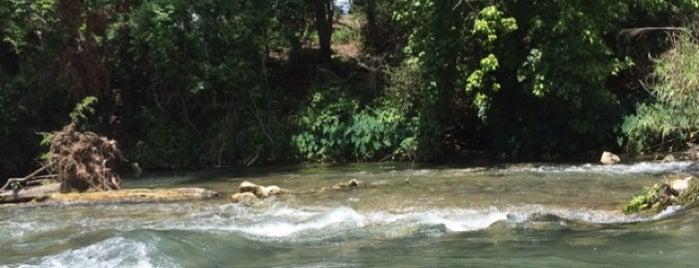 John J Stokes River Park is one of Dallas to San Antonio.