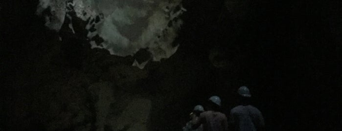Dark Cave Conservation Site is one of 🚁 Malaysia 🗺.