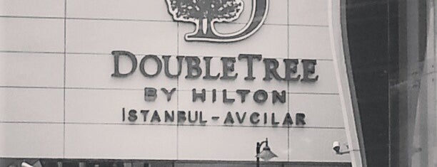DoubleTree by Hilton is one of Locais curtidos por Mustafa.