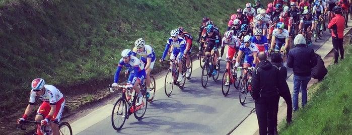 Berendries is one of Belgium / Events / Ronde van Vlaanderen 2019.