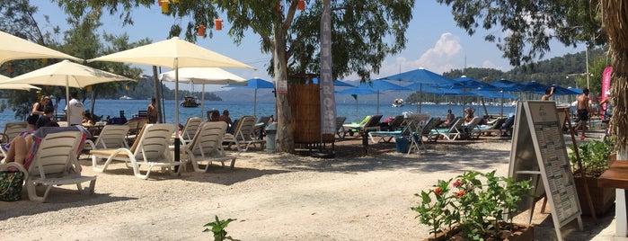 Albatros Beach Bungalov & Butik Otel is one of Butik Otel.