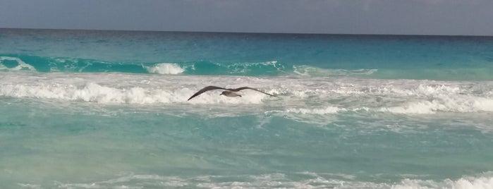 Playa Marlin is one of Riviera Maya.