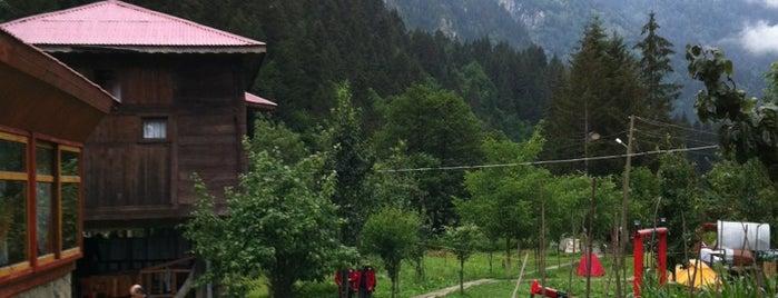 Çat Yaylası is one of Mountain Resorts In Black Sea Region.