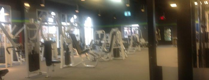 Fitness 4 All is one of Gwen'in Beğendiği Mekanlar.